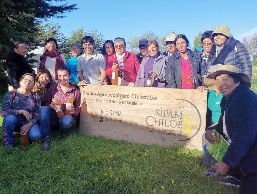 Comunidades de Putre realizan gira técnica a Chiloé para vivir experiencia Sipam