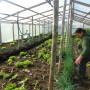 Sipam Chiloé: 10 años de reconocimiento mundial